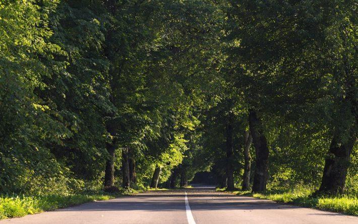 Извилистые дороги Калининградской области