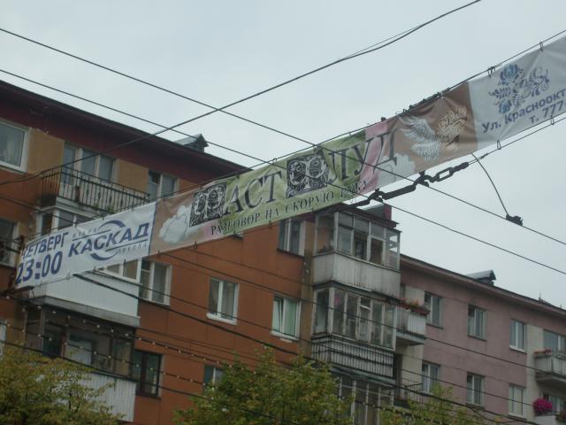 В Питере растяжки с рекламой убрали давно, а в Калининграде они продолжают цвести махровым цветом