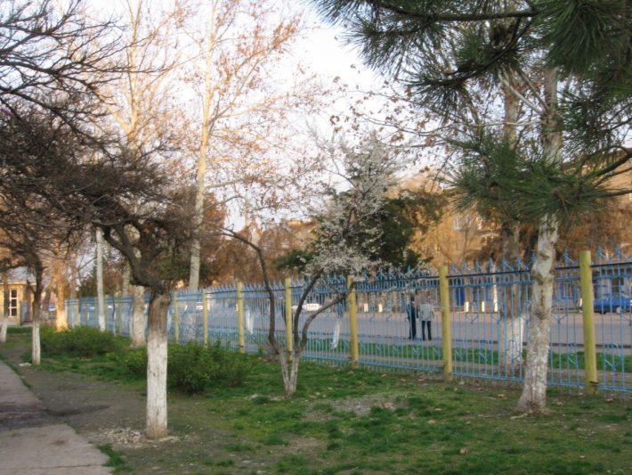 Март в Ташкенте