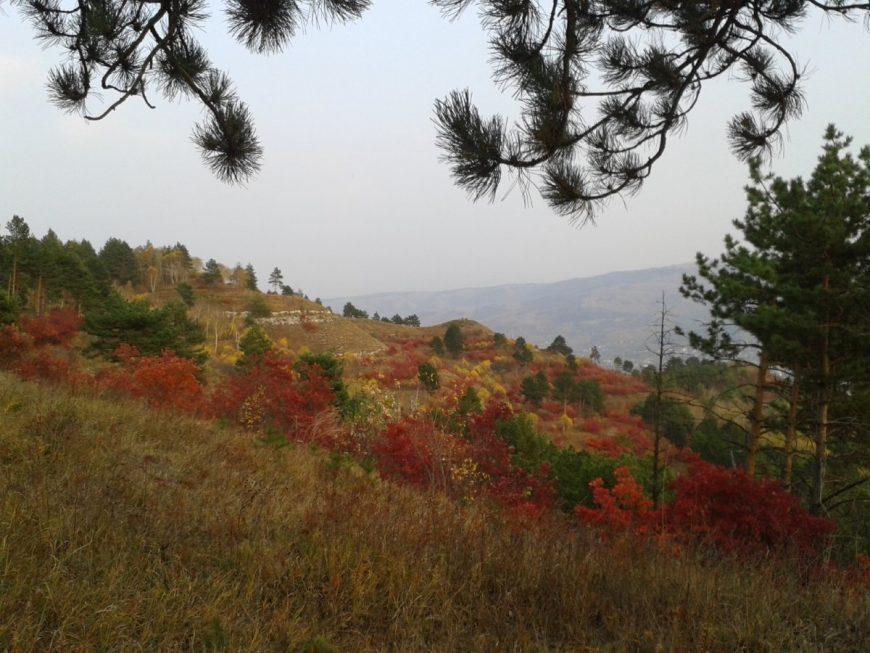 Осень на горке недалеко от Кисловодска
