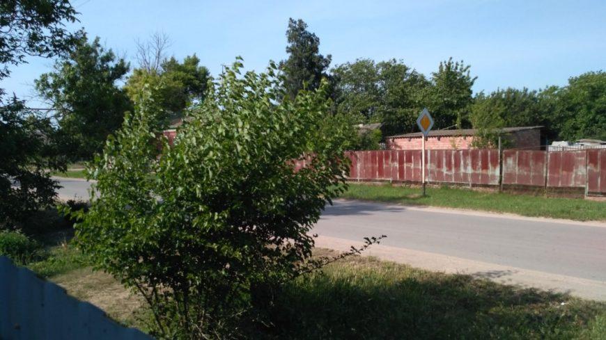 Станица Камышеватская