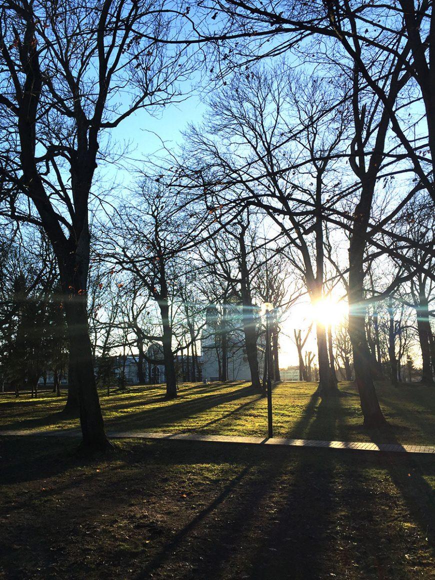 Калининградский декабрь во всей красе. Такие фотографии зимой можно скидывать родным и друзьям бесконечно