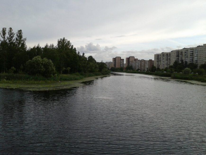 Вид на многоэтажки Колпино из парка Чухонка