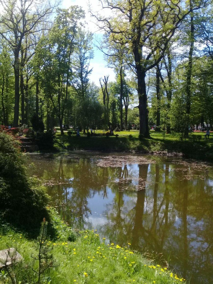 Обожаю все эти парки и пруды