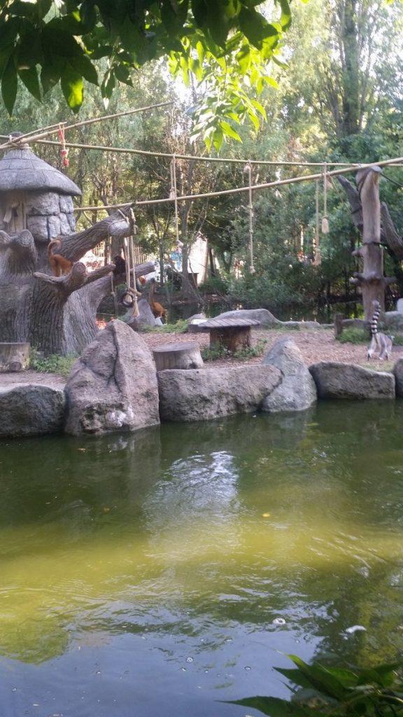 Сафари парк Солнечный остров