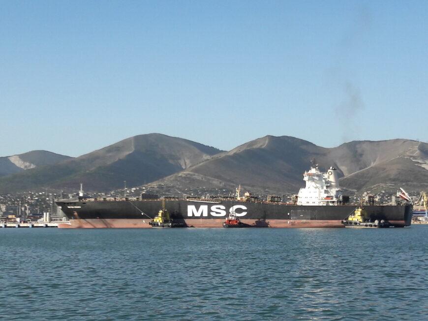 Вот такие гиганты ходят в Цемесской бухте!