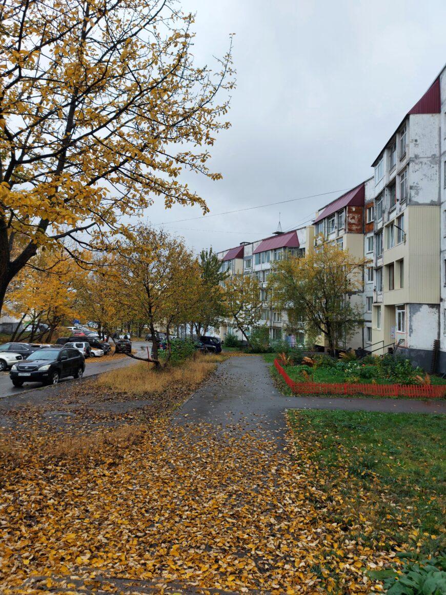 Красавица-осень в городе