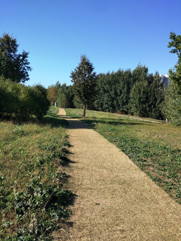 """Но бывает и так: чудесный летний день, на небе ни облачка. Дорожка в """"прекрасное далёко"""" в Митинском ландшафтом парке."""