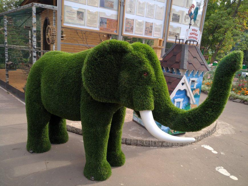 Около Липецкого зоопарка