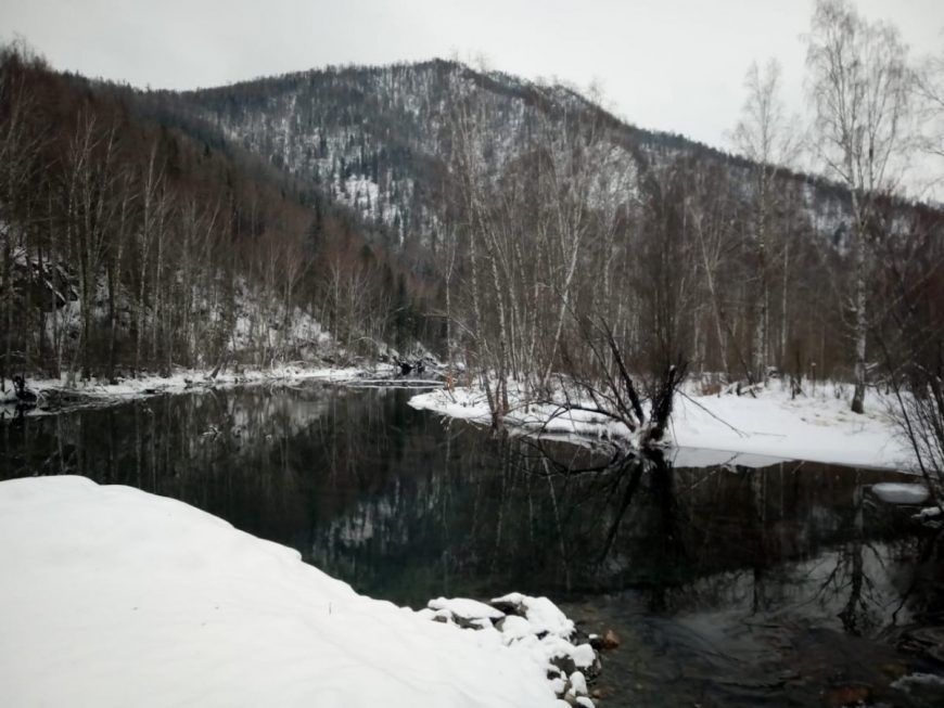 Речка в сибирской тайге