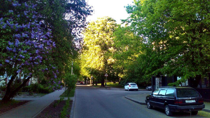 Обычная улица в Центральном районе