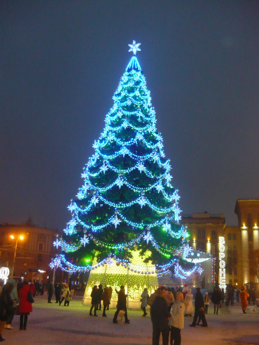 Центральная елка