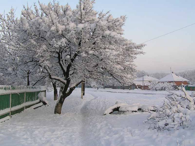 Зимняя Соколовка