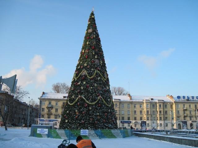 Елка на площади Дерунова