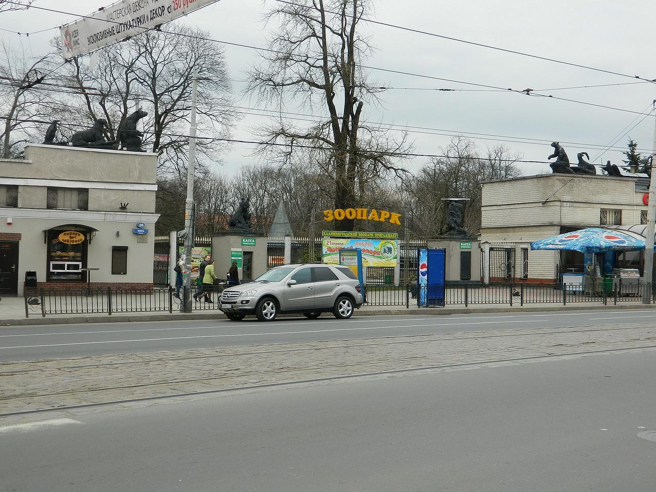 devushka-pokazala-pisyu-blizko