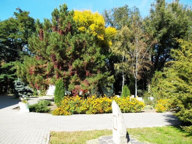 Городской парк Батайска