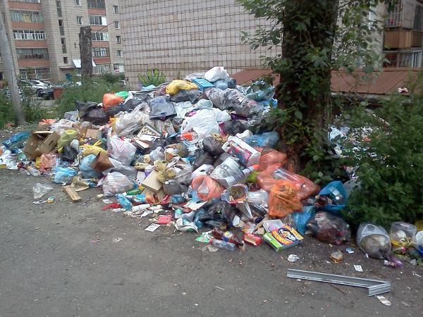 """Фотография с конкурса """"Самый грязный томский дворик"""""""