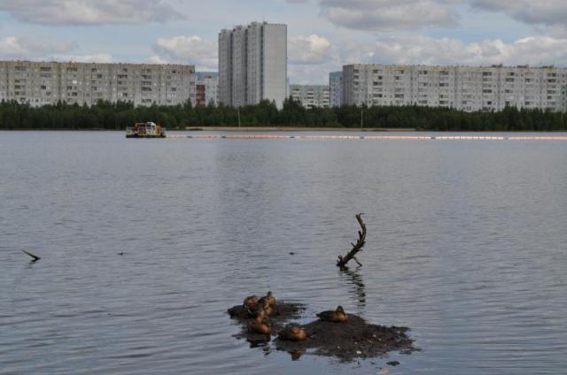 На фотографии видно, как посередине озера работает земснаряд для очистки дна озера от мусора и ила
