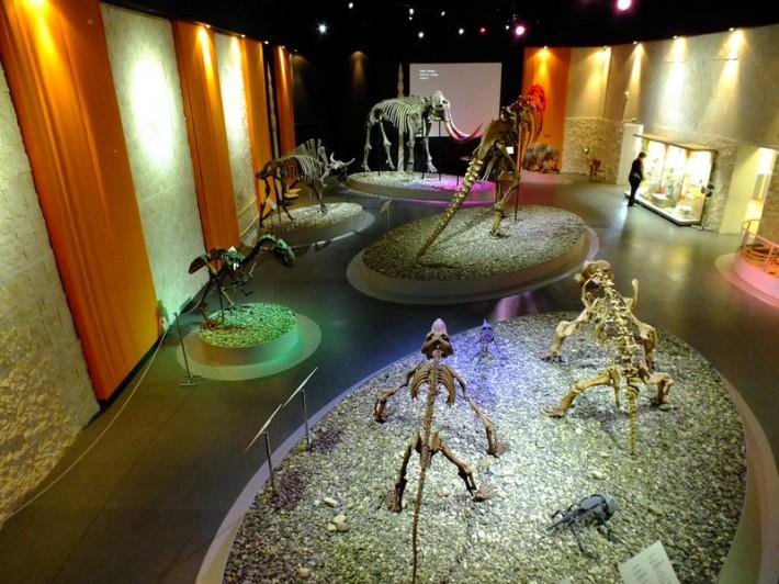 Экспонаты музея пермский древностей