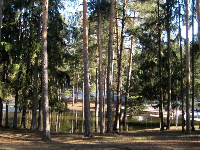 Парк культуры и отдыха в Жуковском