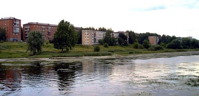 Воткинск. Березовка