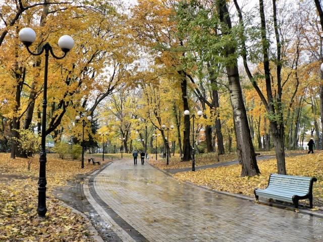 Центральный парк Киева