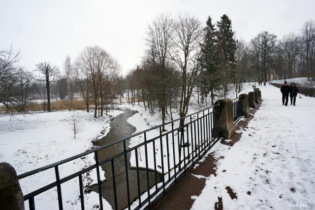 Ломоносов, городская