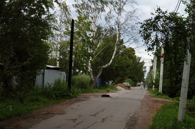 Улица в Петро-Славянке.