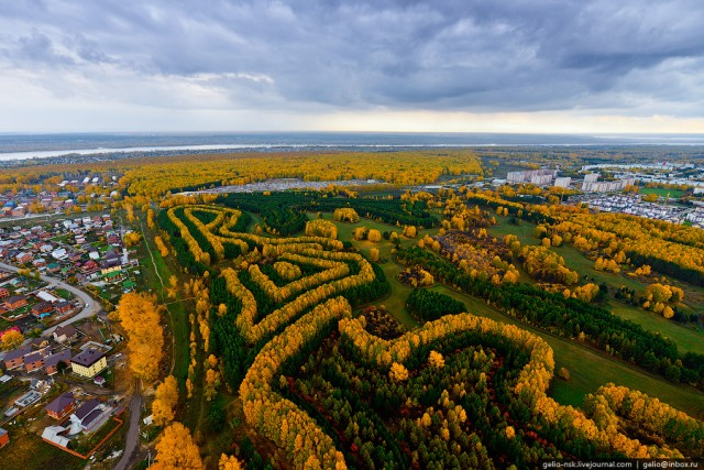 Посадки деревьев возле ВАСХНИЛа В таком виде их можно увидеть только с высоты и только осенью.