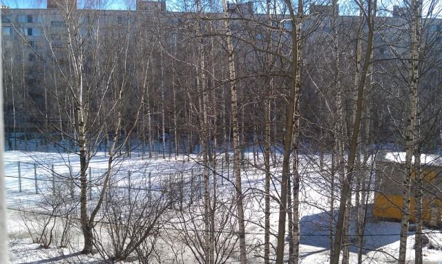 Вид из нашего окошка во двор. Летом здесь будет классно!