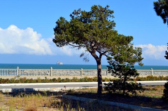 Парк у моря