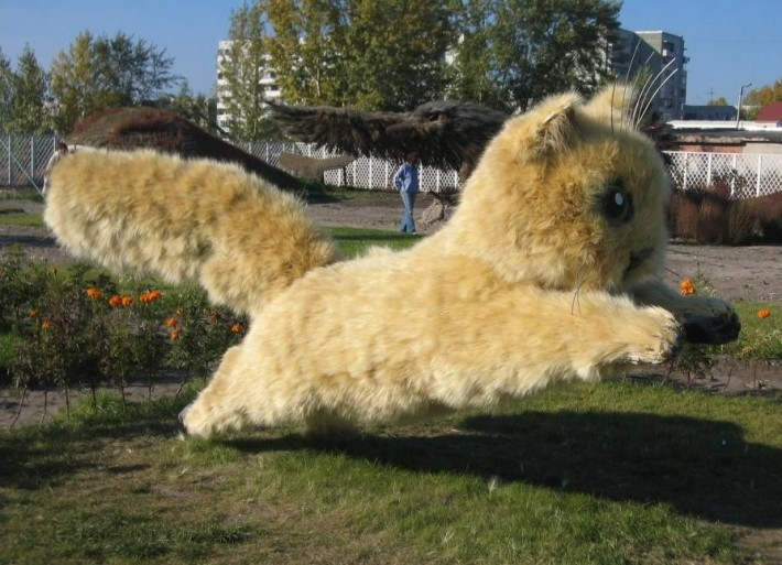 Фигура котенка из ячменя, топиарный парк