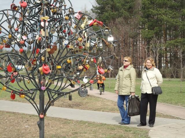 Дерево любви у Школьного озера – символ прочности семейных уз