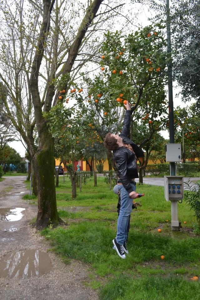 Италия. Апельсины на парковке у Помпей