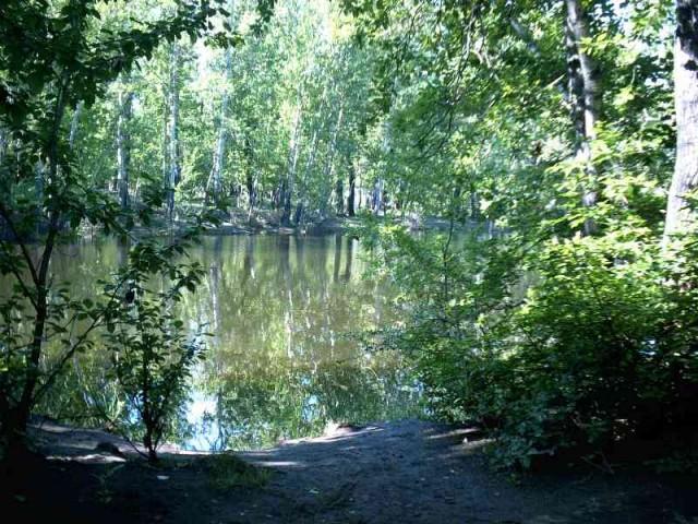 Естественный парк