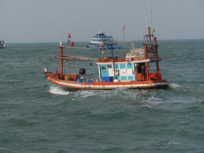 Ежедневная экспресс доставка свежих морепродуктов