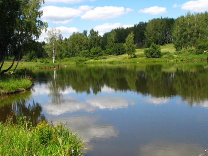 В таких вот прудах неплохо половить рыбку! (Веневский район Тульской обл.)