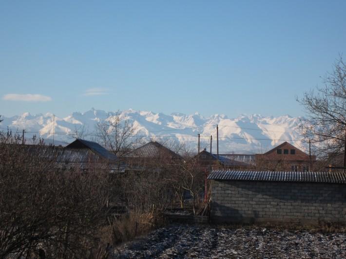Вид с нашего двора