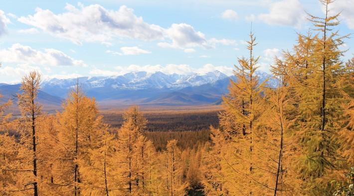 Природа Колымы обладает своим неповторимым очарованием