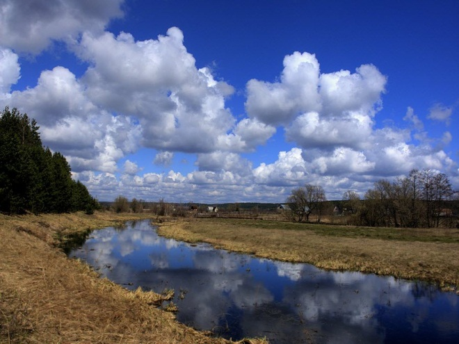 Природа Тамбовской области