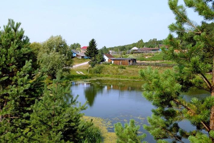 Природа омского севера