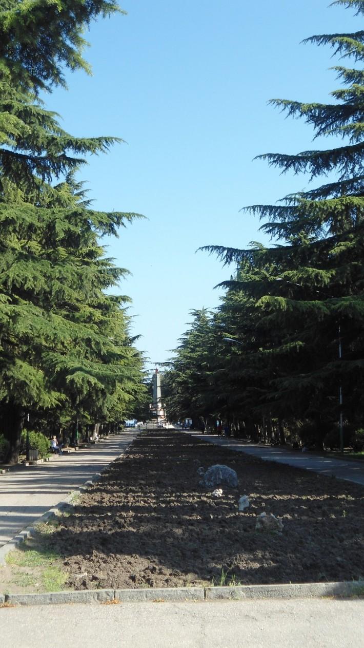 Аллея в Приморском парке