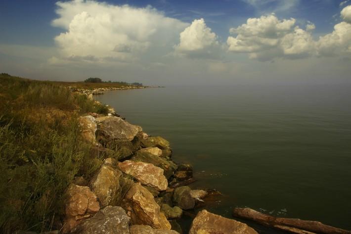Берег Обского водохранилища