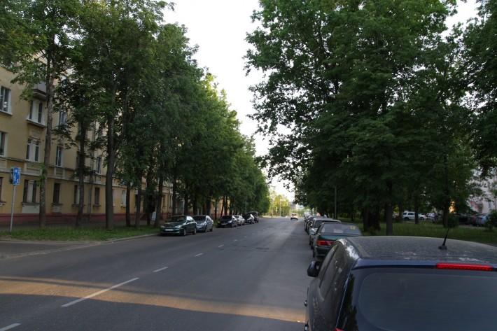 Правда зелени в Старом районе действительно много. Центральная улица Ленина