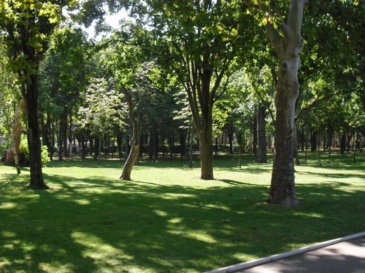 Один из парков Краснодара