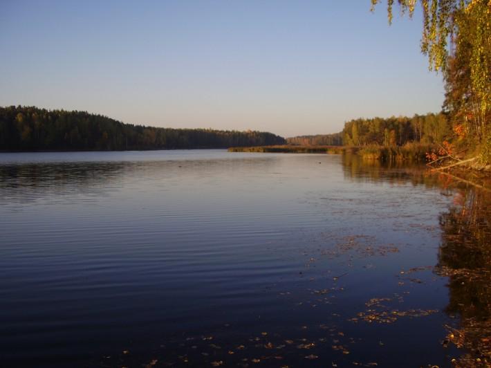 Осень – лучшее время для ловли окуня