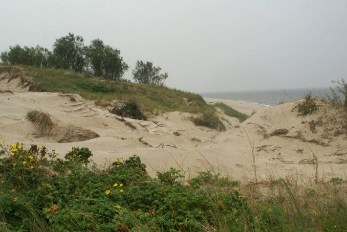 Лето на Балтийской Косе