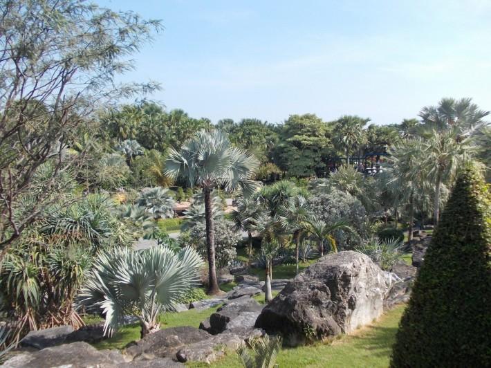 Прекрасный тропический сад Нонг Нуч, в пяти минутах езды от Наджомтьен