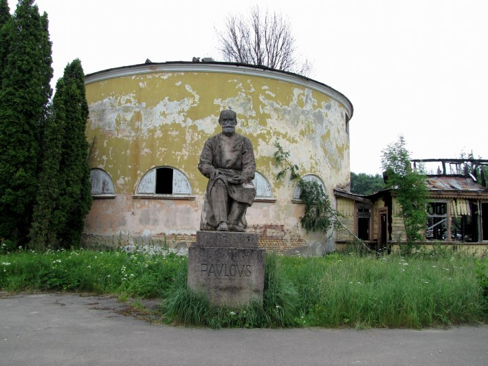 И.П.Павлов – русский учёный, первый русский нобелевский лауреат, физиолог