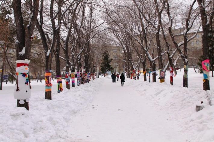 Жители города приняли участие в акции «Теплый сквер» и нарядили деревья в шарфы и варежки